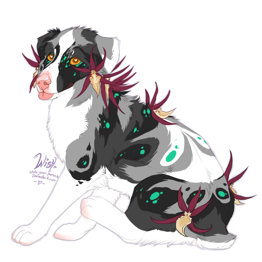 Spider Orchid Aussie Pup [closed~] by Stole-Your-Popsicle