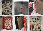 Book of Blood-Altered Book