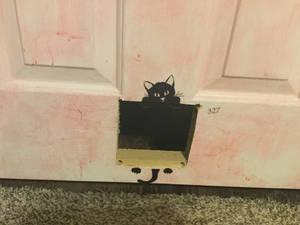 My new cat door.
