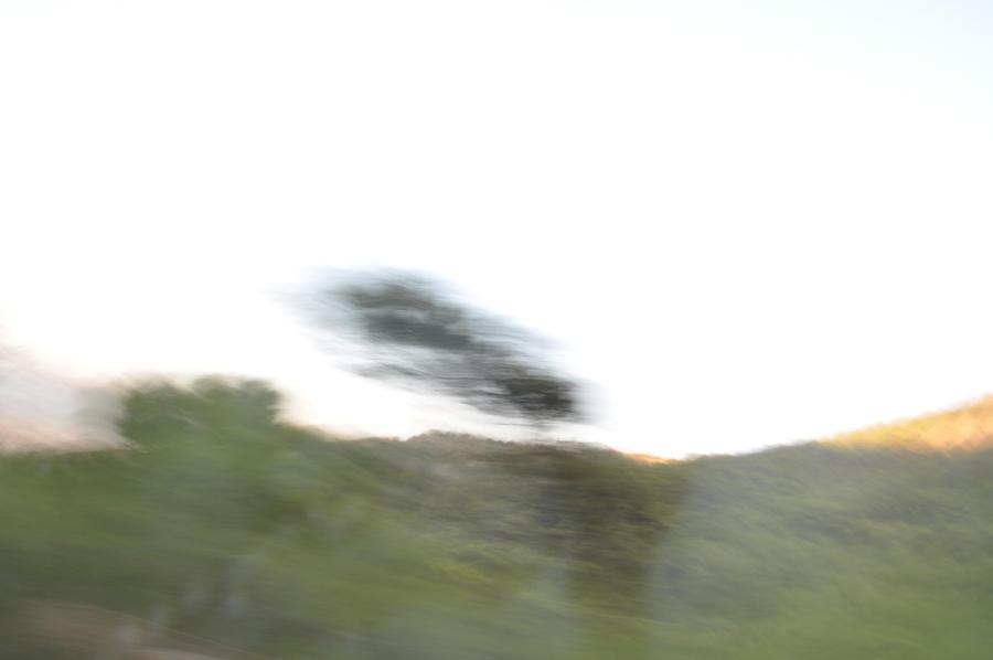 Extreme blur by gokmenkaya