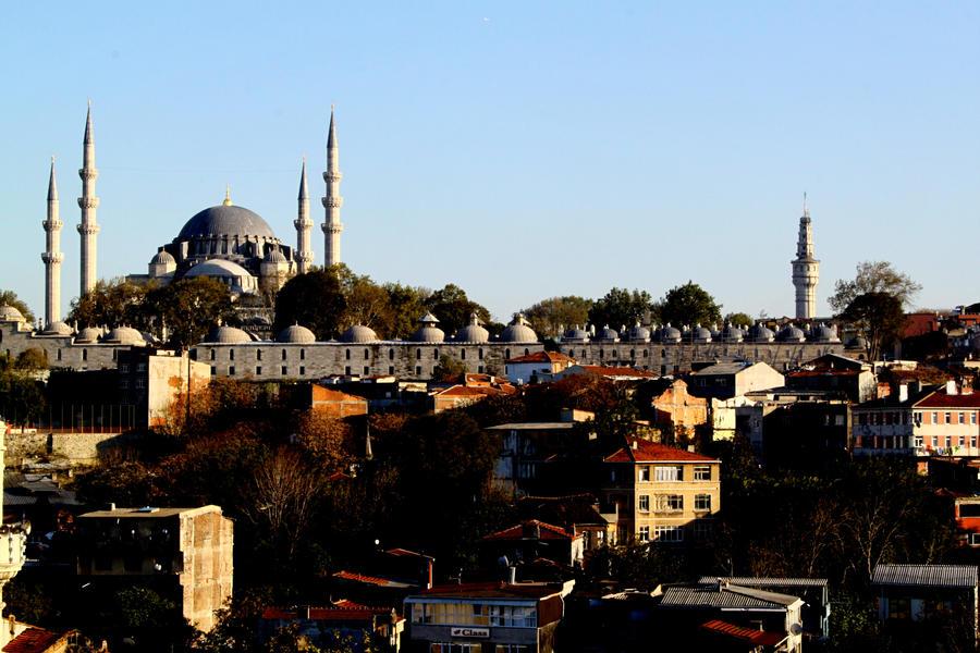 mosque in Istanbul by gokmenkaya