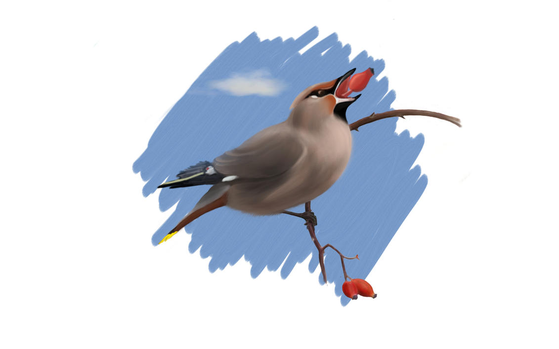 birdies2 by MorningLaughter