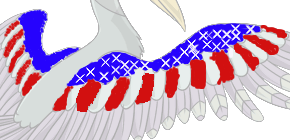 Ovipet tattoo USA Flag by 1wolfgir1