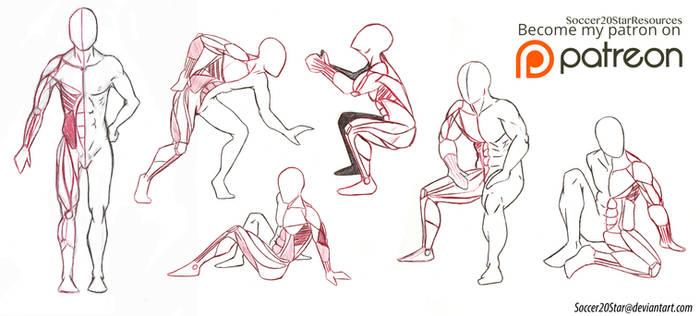 Anatomy 5 Poses Full body muscles by CourtneysConcepts