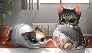 Creature Collection: Kitten