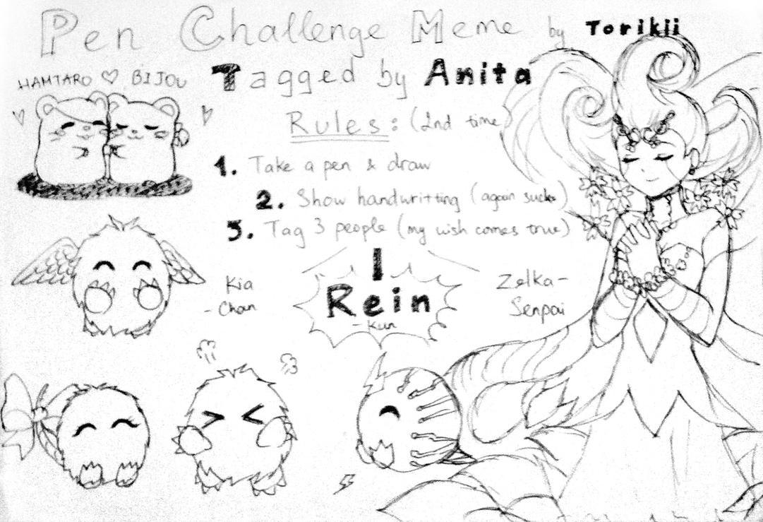 Pen Challenge Meme tagged by Anita-chan by Torikii