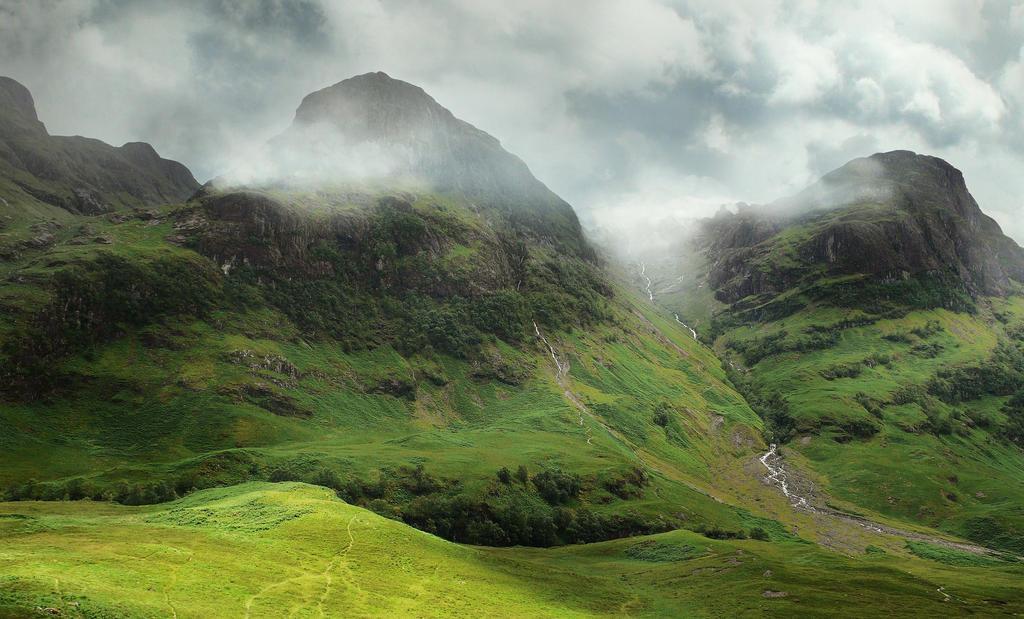Adobe Photoshop Nature Brushes Free Download