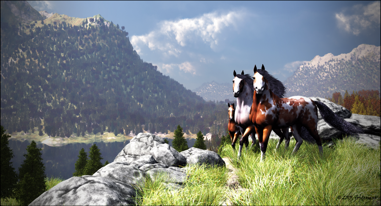 Mustang Valley by jbjdesigns