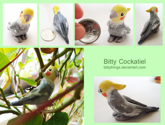 Bitty Cockatiel - SOLD by Bittythings