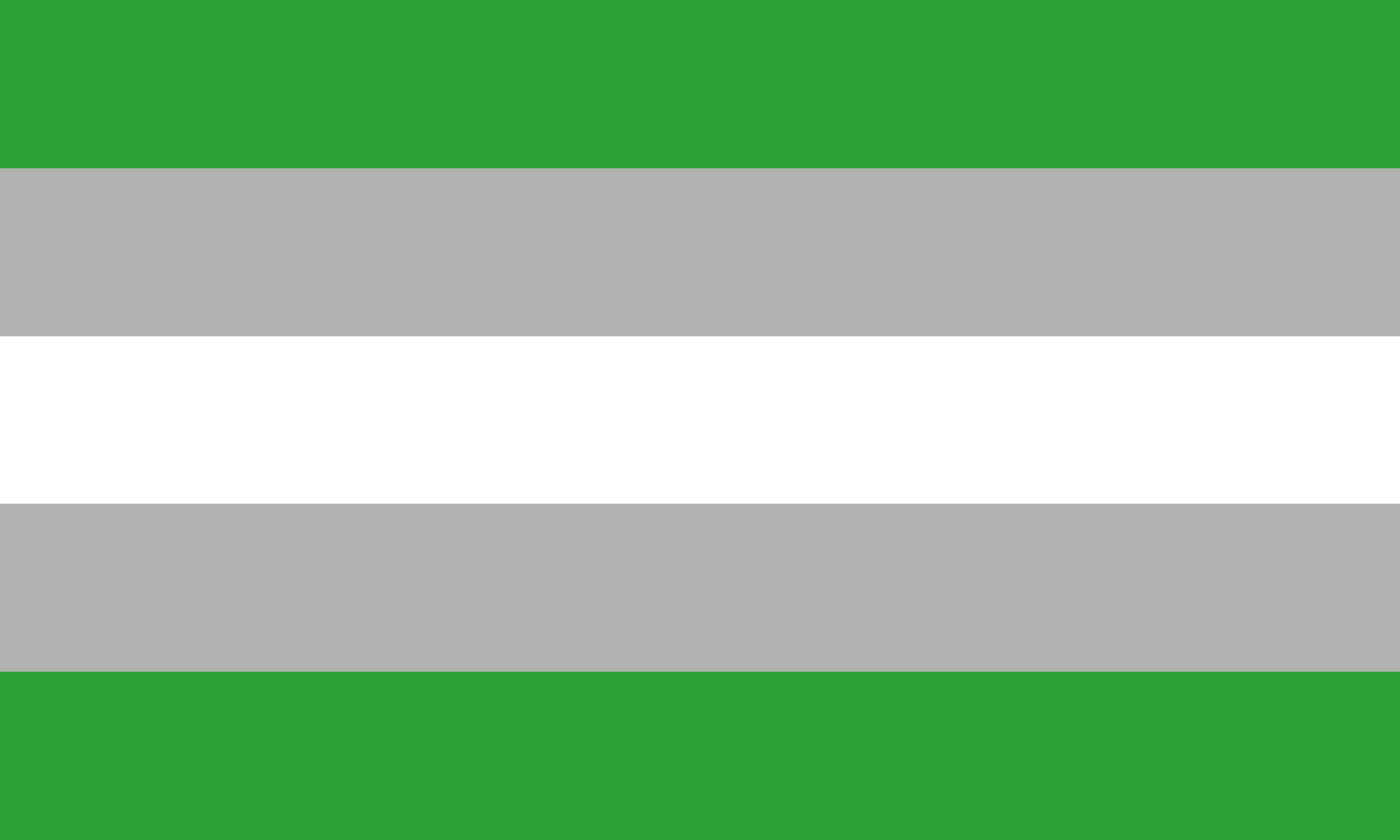 Gray Aromantic (2) by Pride-Flags