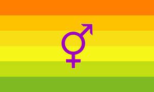 Hermaphrodite Pride (2) by Pride-Flags