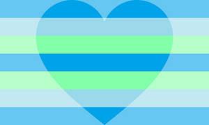 Minromantic Pride Flag (2)
