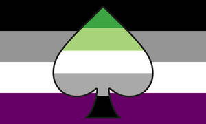 Ace Aro Combo Flag