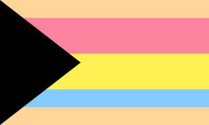 Demipansensual Feminine/Neutral Leaning Flag (2)