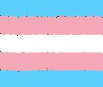 Transgender Text