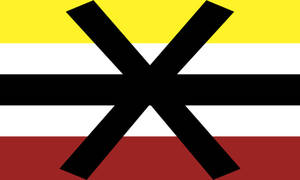 Apothiplatonic Pride Flag (1)