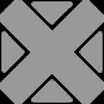 Verangender X