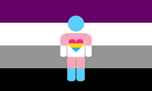 Asexual Panromantic Trans Combo Thing