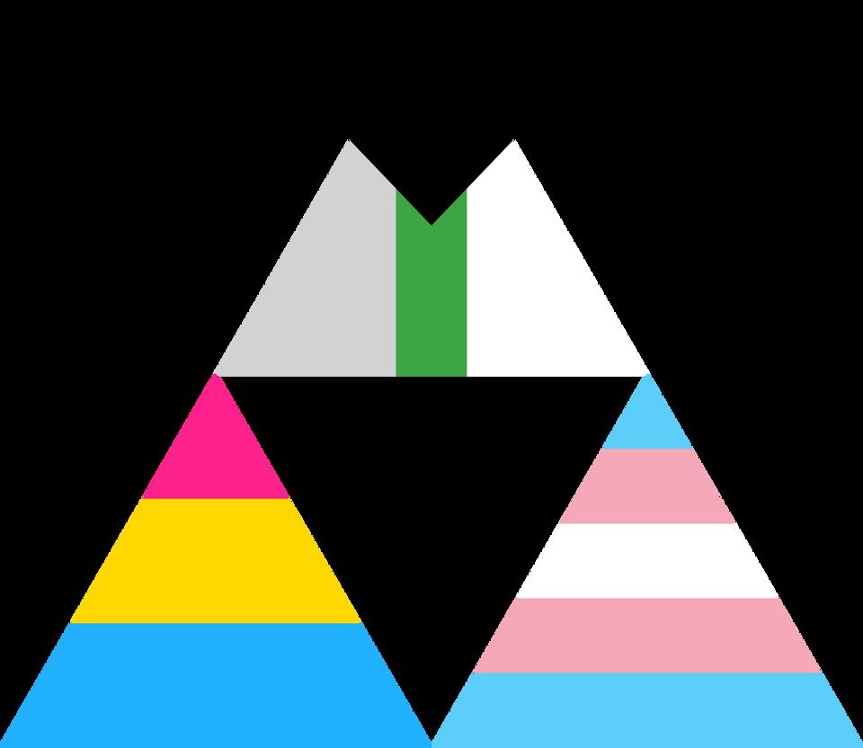 Pansexual transgender