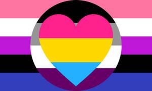 Asexual Panromantic Genderfluid Combo