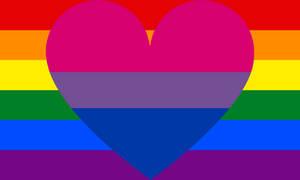 Biromantic Homosexual Combo