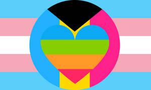 Transgender Demi-pansexual Panromantic Combo