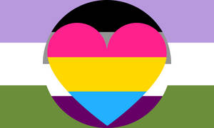 Genderqueer Asexual Panromantic Combo