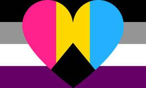 Asexual Demipanromantic Combo