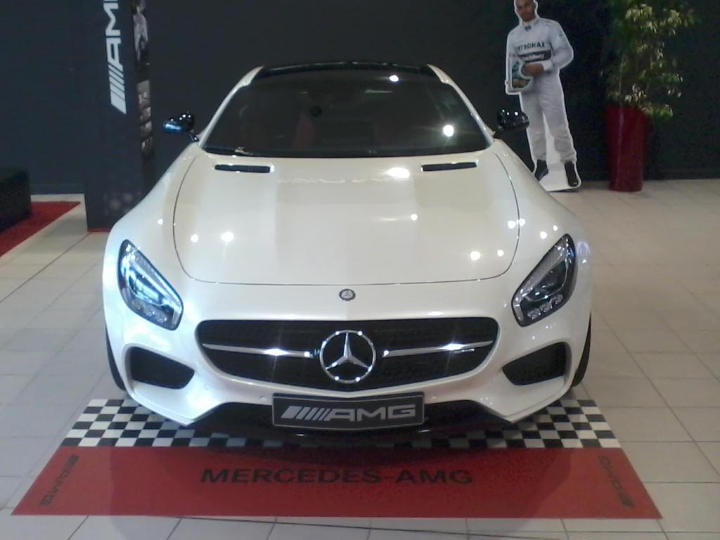 AMG GT by ShalaskaLuna
