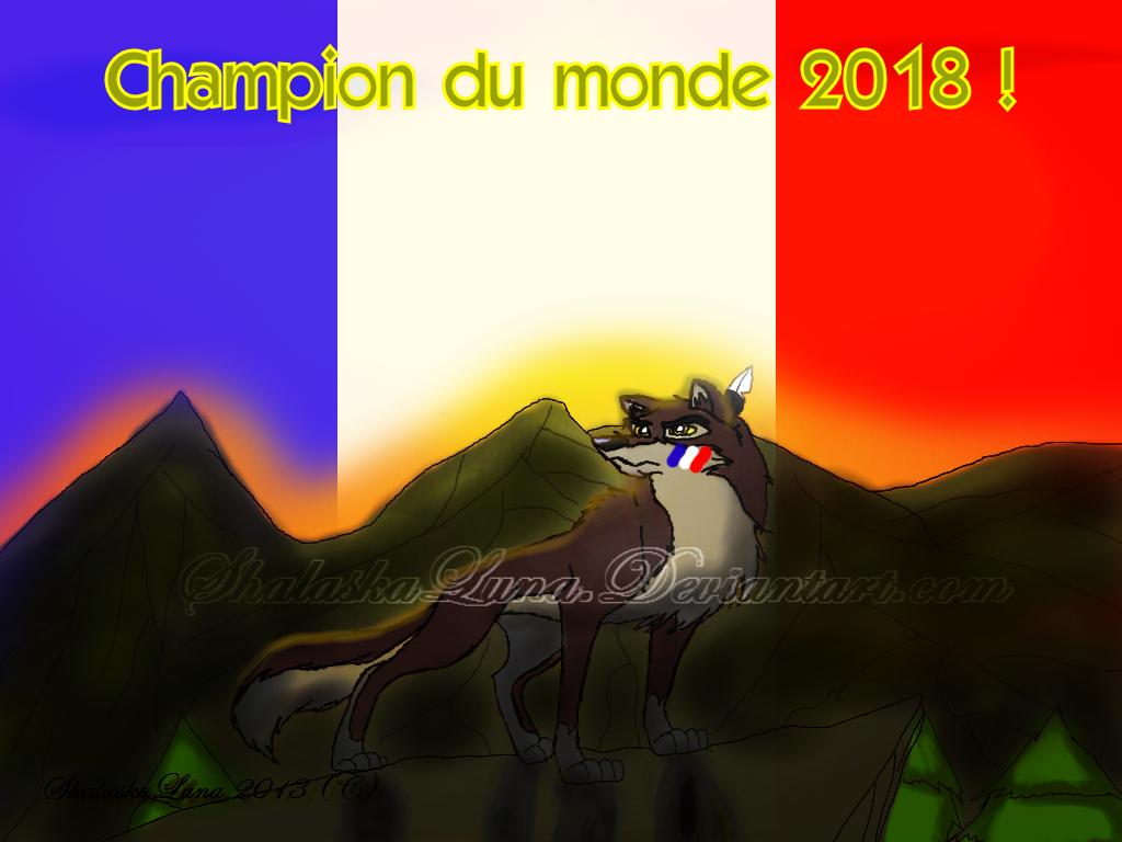 Champion Du Monde 2018 by ShalaskaLuna
