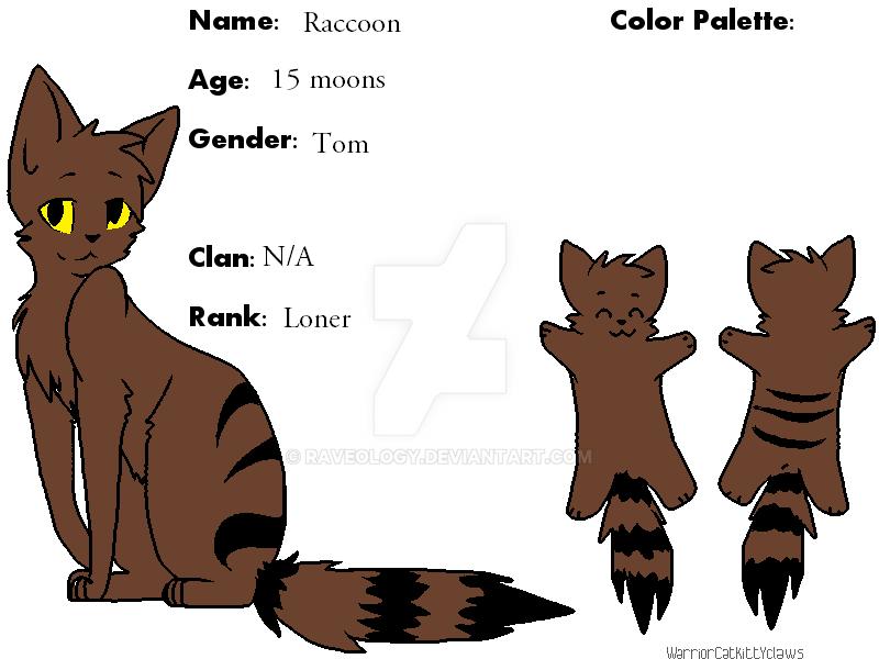 Raccoon by Raveology