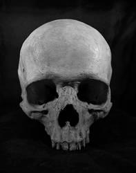 Skull by Angnatsiaq