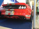 Super Mustang GT