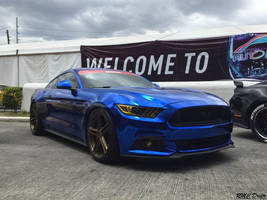 Metallic Blue Mustang by RMCDriftr