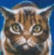 Free Icon: Leafpool by Mondkralle