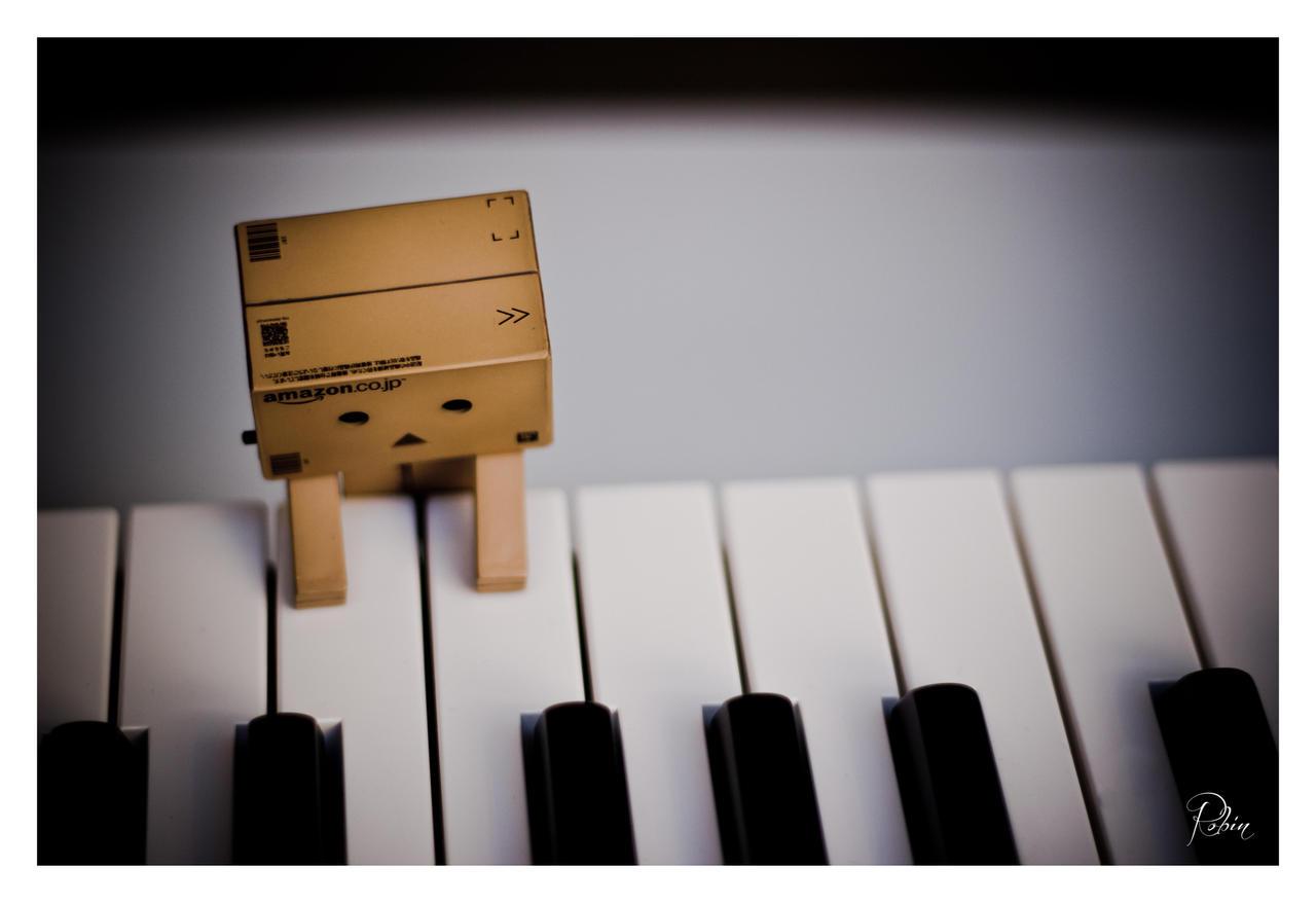 Danbo Amadeus Mozart by Robinours2b