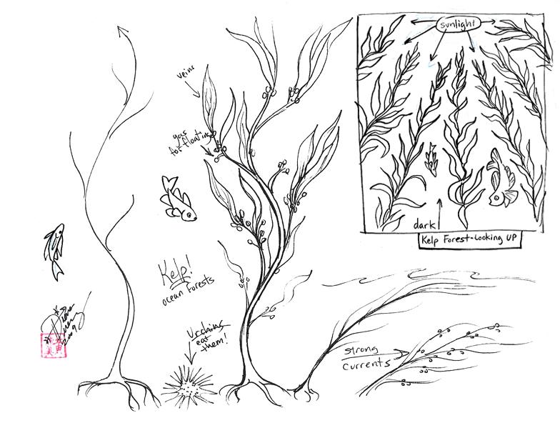 Draw Kelp - Seaweed by Diana-Huang on DeviantArt