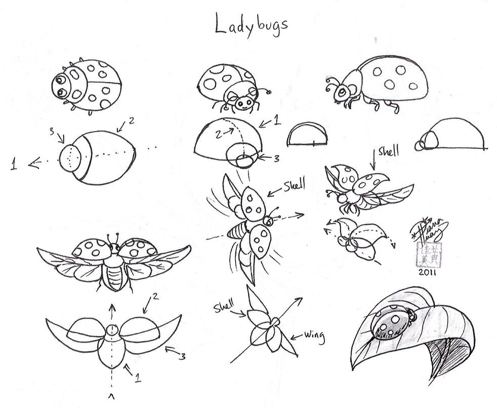 coloring pages of flying ladybugs - photo#23