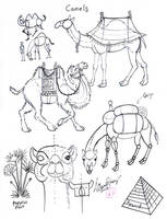 Draw Camels by Diana-Huang