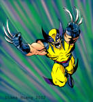 Wolverine by Diana-Huang