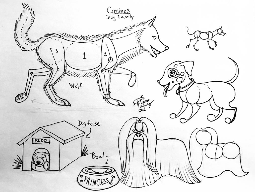 Draw Dogs revised by Diana-Huang on DeviantArt