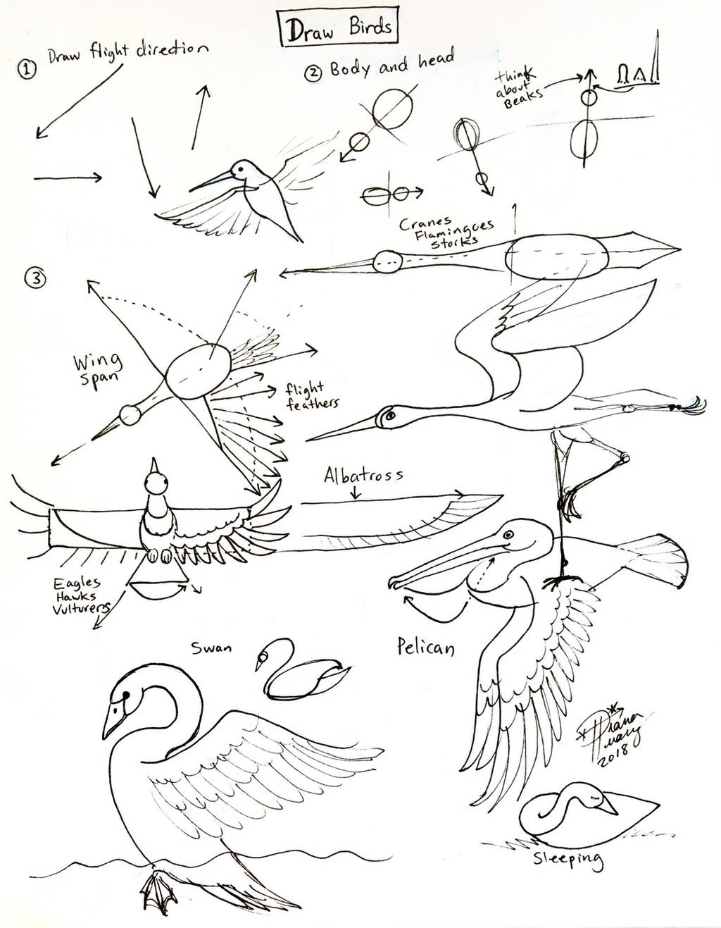 Draw Birds - Revised by Diana-Huang
