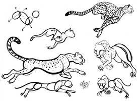 Draw Cheetah revision by Diana-Huang