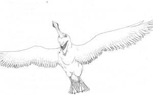 Future Albatross by Cephlaken