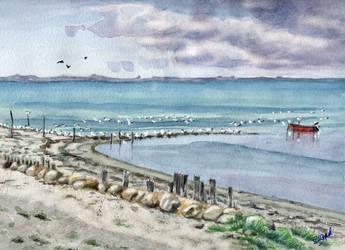 Gulls.. by Henelb