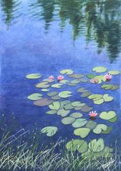 Pond in Mejlgaard Forrest.. by Henelb