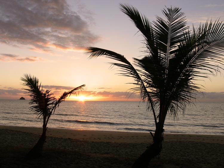 palm cove sunrise no.2 by postaldude66