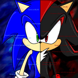 The Differences Between Sonic and Shadow by usankusai