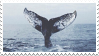 [stamp] whale by environmentalism