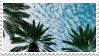 [stamp] palm trees by environmentalism